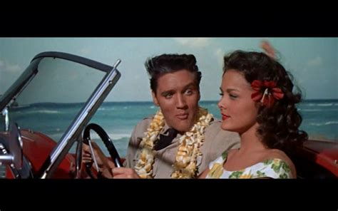 film blue hawaii my week in film july 8 to july 14 for cinephiles by a