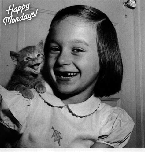 Little Girl Meme Teeth - 17 best images about smiling kitties on pinterest cats cat day and cats humor
