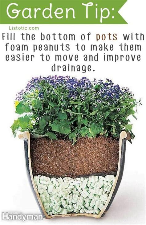 genius gardening tips  ideas spaceships