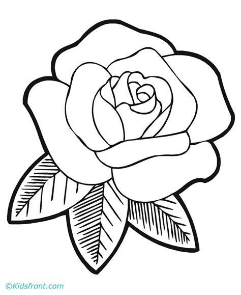 printable rose images printable rose pictures 345478