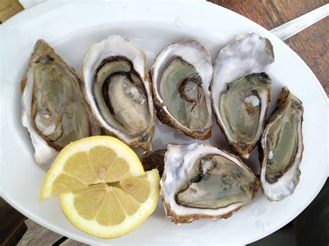 alimenti zinco alimenti ricchi di zinco nutrizione e propriet 224 dei cibi