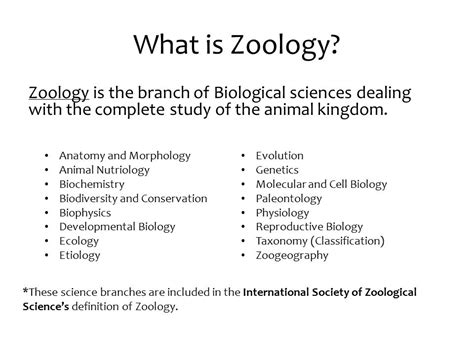 definition of animal biology introduction to zoology ppt video online download