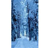 Snow Forest Blue Ice Android Wallpaper Free Download