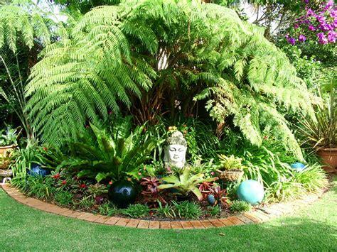 garden small tropical garden ideas small garden design