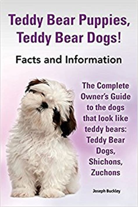 teddy puppies information teddy puppies teddy dogs facts and information the complete owner s guide