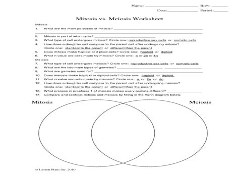 Meiosis Worksheet Answers by Mitosis Vs Meiosis Worksheet Answer Key Worksheets