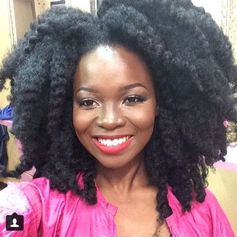 thick coiled hair 389 best natural hair braid styles images on pinterest