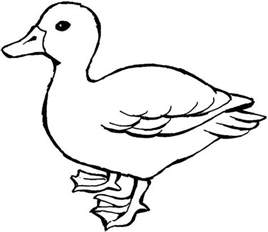 duck coloring page free coloring pages of duck