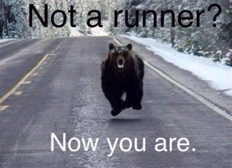 Running Bear Meme - not a runner motivating memes