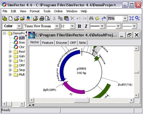 vector pattern software vector design software home mansion