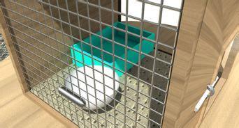 costruire una gabbia per conigli come preparare la gabbietta per un coniglio wikihow