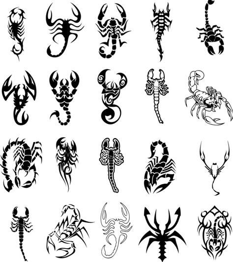 tattoo flash materials keywords graphic design scorpion tattoo vector material