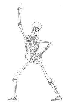 simple bone diagram 1000 images about simple science the human on