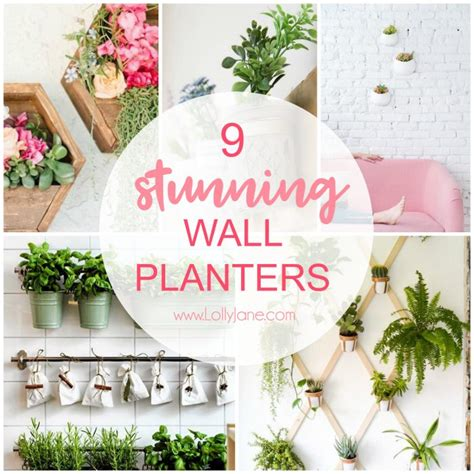 9 stunning wall planters easy decor ideas lolly