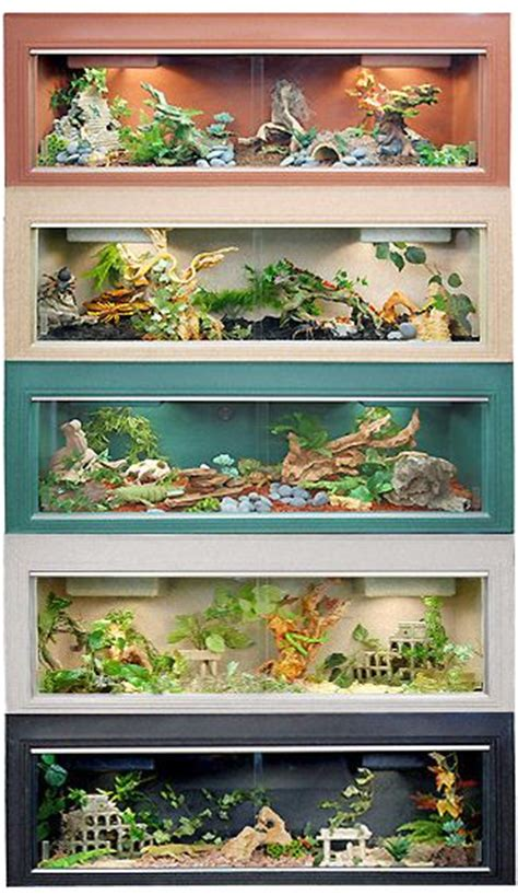 Reptile Cage Decor by Reptile Cages Awesome Ideas Bearded