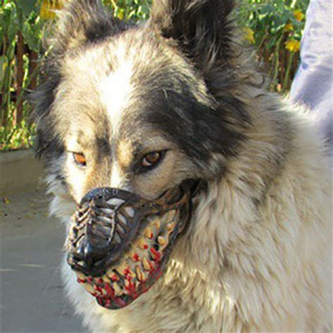 scary dogs muzzle creepy scary muzzle for all breed accessory ebay