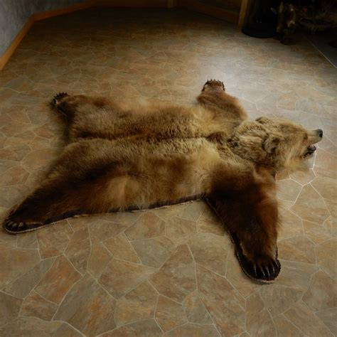 grizzly skin rug grizzly size rug mount for sale 15264 the