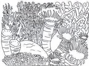 great sheets great barrier reef coloring pages coloring home