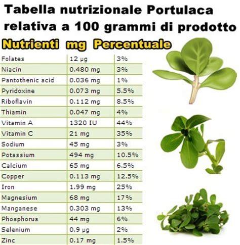 alimenti ricchi di manganese propriet 224 e benefici portulaca vitamine proteine