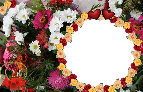 Frame Design Flower | flower picture frames beautiful flowers