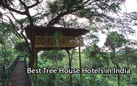 top 5 best tree house hotels in india budget tree house resorts crazypundit com