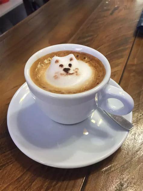 Capucino Coffe cappuccino