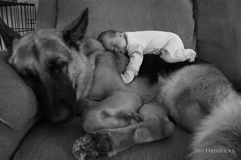 puppy and baby sleeping dogs and babies sleeping what the flicka