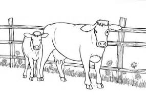 cow and calf coloring pages coloring pages