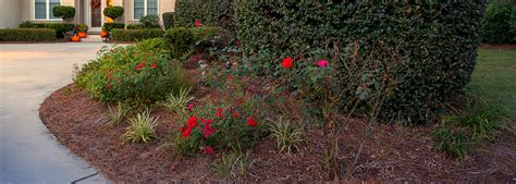 Landscape Supply Myrtle Residential Landscaping Lawn Maintenance Myrtle