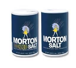 Morton Iodized Salt 737gr morton iodized salt euzicasa