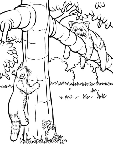 cute zoo coloring pages how to order cartoon caricature ads and gifts of people