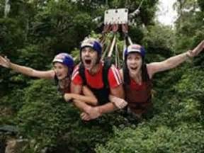 minjin jungle swing six things you must do in cairns