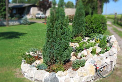 piante da giardino roccioso caranzano edilizia arredo giardino