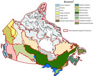 ecozone map of canada biodivcanada ca ecological classification system for the