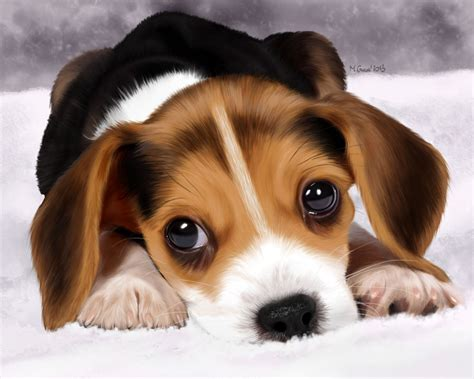 beagle puppies ta beagle puppies photos wallpapers 2013 breeds picture