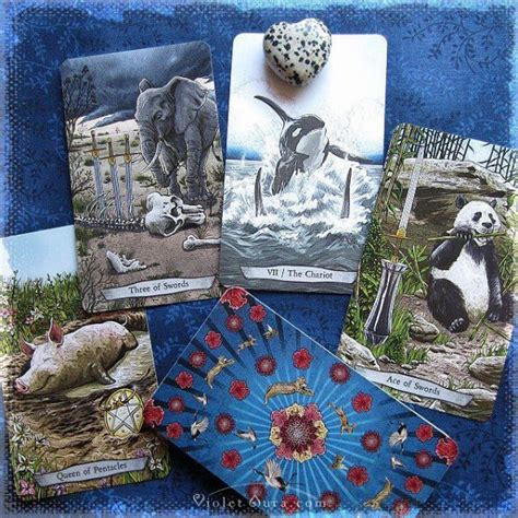 animal totem tarot animal totem tarot avalon store