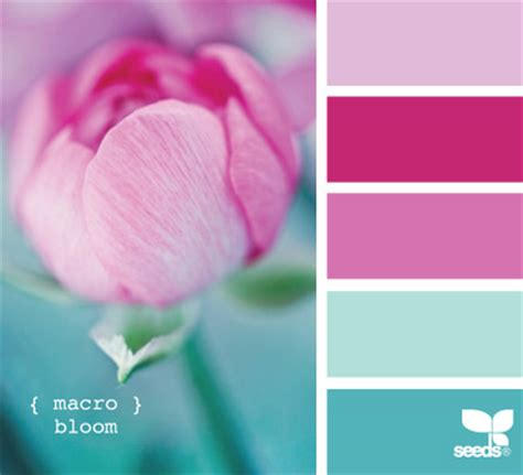 color inspiration design reveal global