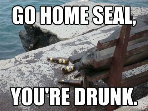 You Re Drunk Meme - go home seal you re drunk go home you are drunk