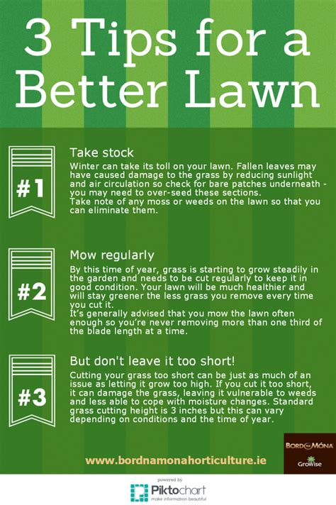 10 Tips For Being A Better Lover by Bord Na M 243 Na Horticulture 3 Tips For A Better Lawn