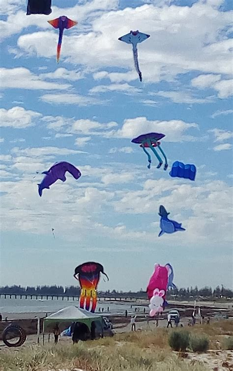 best light wind kite 2017 adelaide kite festival 2017
