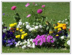 cuento infantil las flores jardin leyendas cuentos