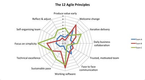 The Agile Principles Checklist Barry Overeem The Liberators Agile Assessment Template