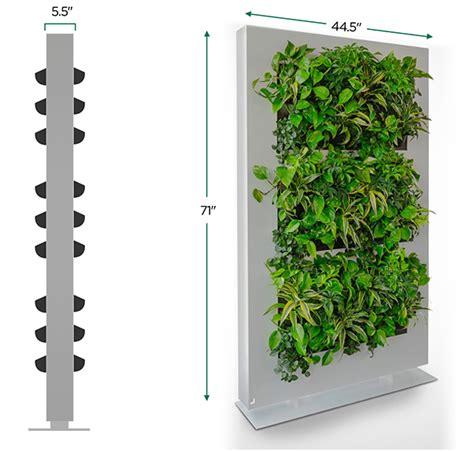 vertical garden system livedivider plant wall  suite