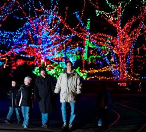 indianapolis zoo lights at the zoo indianapolis hours avwmedia