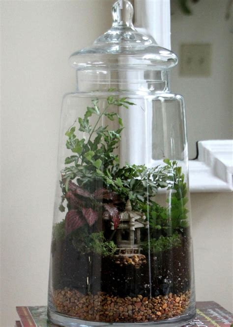 best plants for closed terrariums easy steps for creating a terrarium hgtv