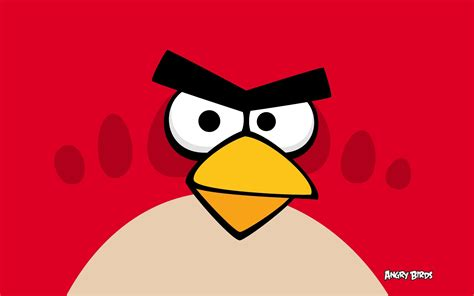 angry bid angry birds wallpapers hd wallpapers id 9824