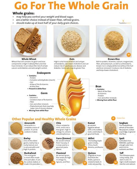 whole grains pdf go for the whole grain poster 16 99 nutrition