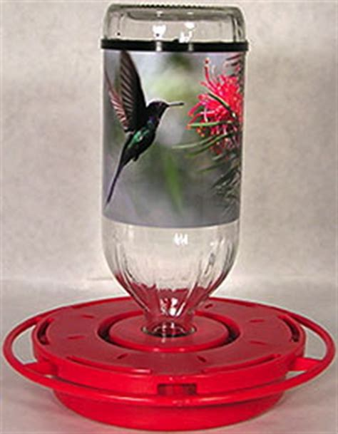 hummingbird feeder juice recipe bird feeders