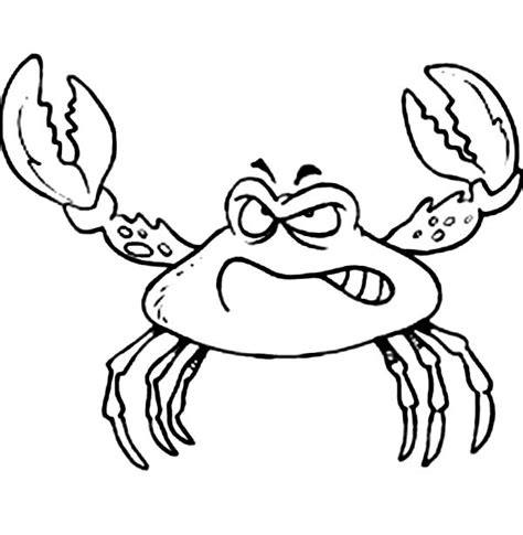 king crab coloring page king crab coloring page related keywords king crab