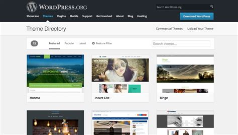 best website builder 3 3 of the best website builders and how to choose the